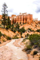Water Canyon In Bryce National Park